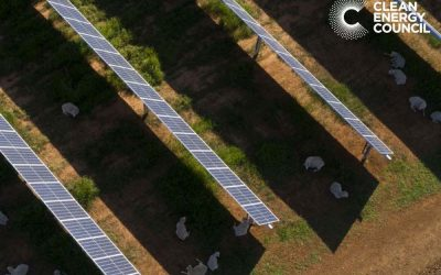Agrisolar Guide